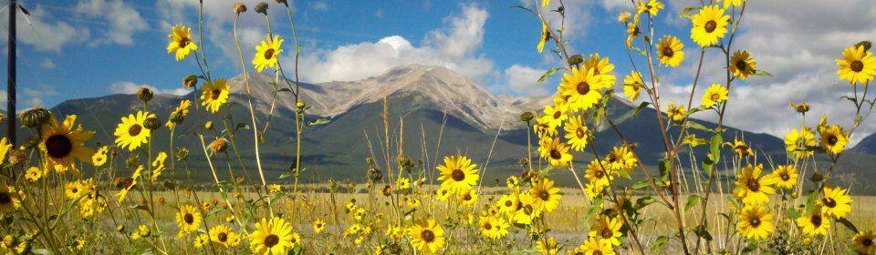 Image of Mount Princeton near Buena Vista Colorado